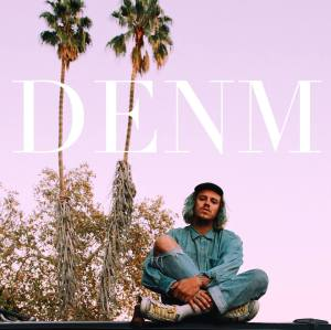 denm_feat