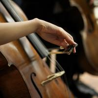 Investing On A Quality Cello - Is it Worth the Cost?
